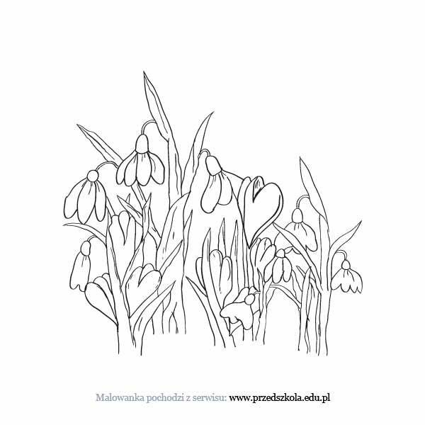 Wiosenne Kwiaty Kolorowanka Darmowe Kolorowanki I Malowanki Dla