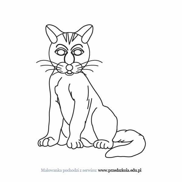 Kot Kolorowanka Darmowe Kolorowanki I Malowanki Dla Dzieci