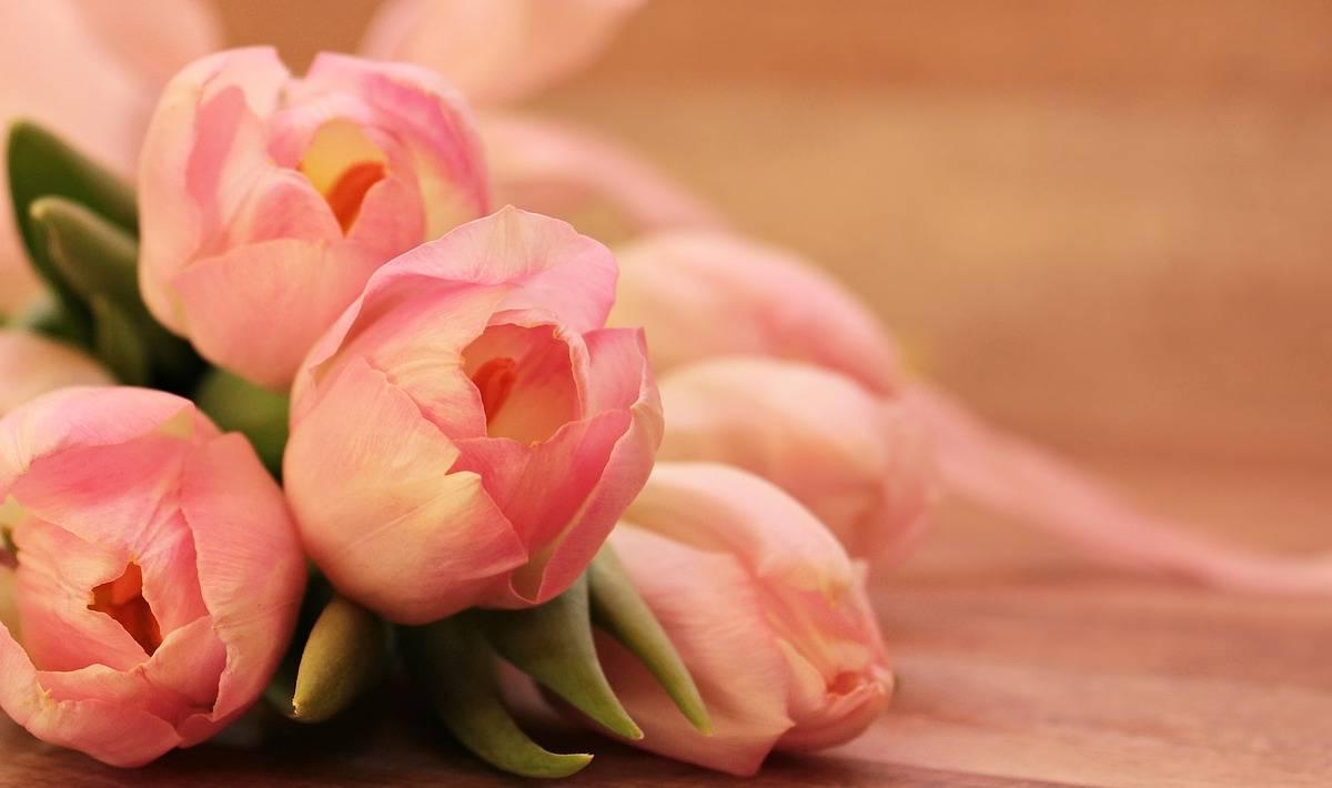 Dziś Dla Każdej Pani Mamy Kwiatek Scenariusz Uroczystości