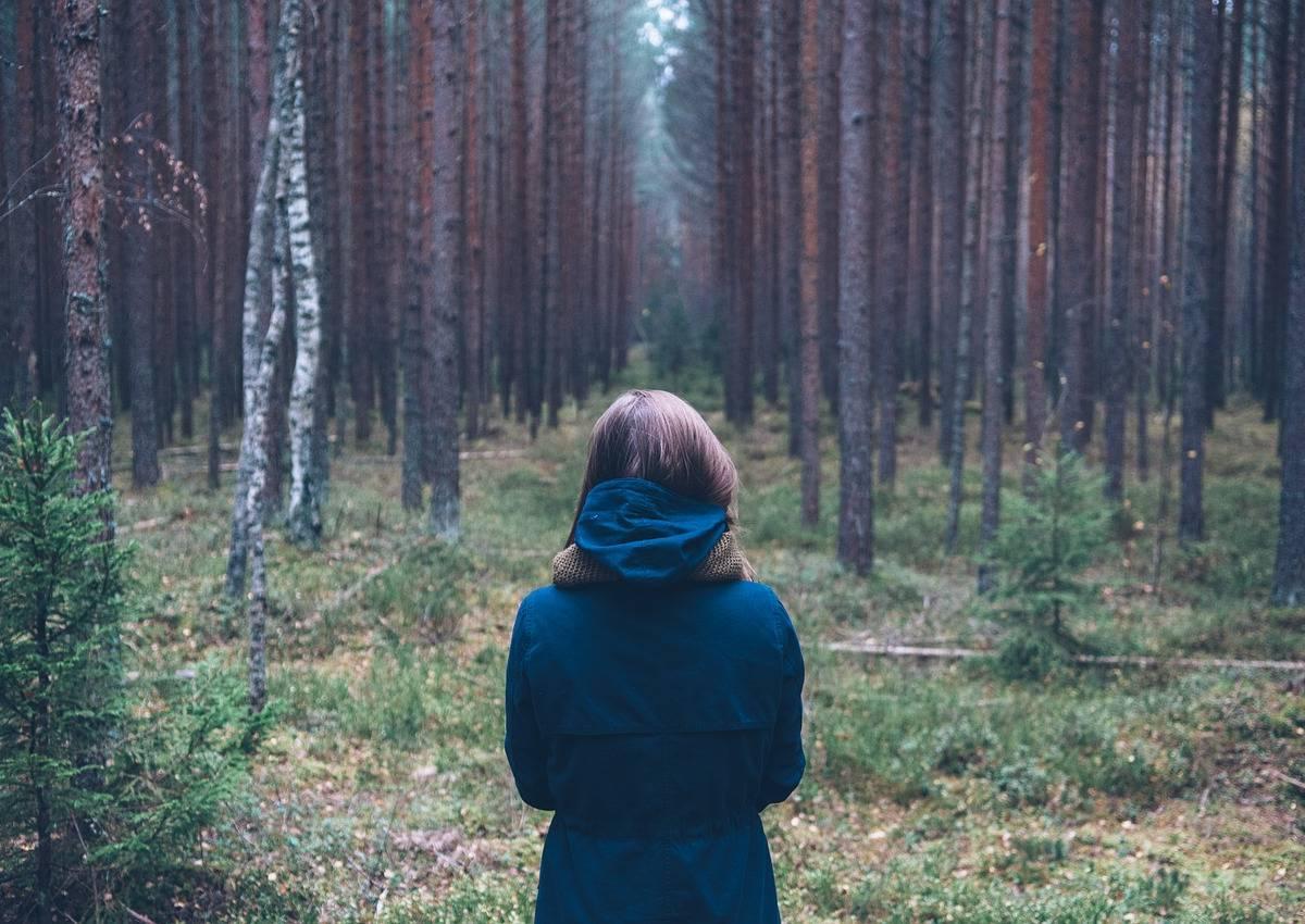 W Czystym Lesie Scenariusz Zajęć Dydaktycznych W Grupie 6