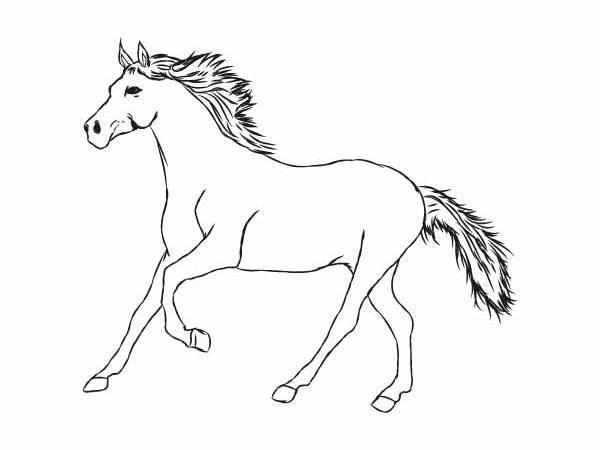 Koń Kolorowanka Darmowe Kolorowanki I Malowanki Dla Dzieci